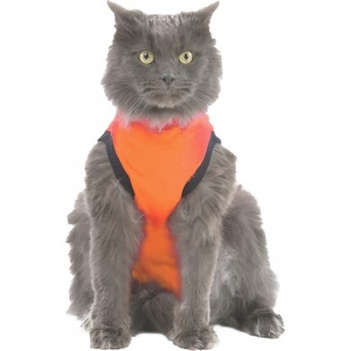 Medical Pet Shirt for dogs and cats  Pharmacy4petscom