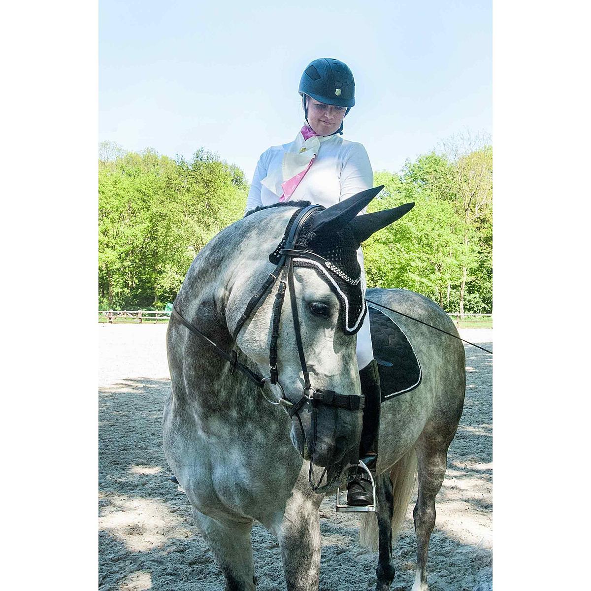 Harrys Horse Nose Net Universeel Zwart