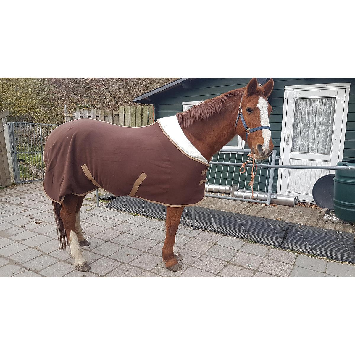 Harrys Horse Couverture Polaire Teddy avec Demi Cou Marron