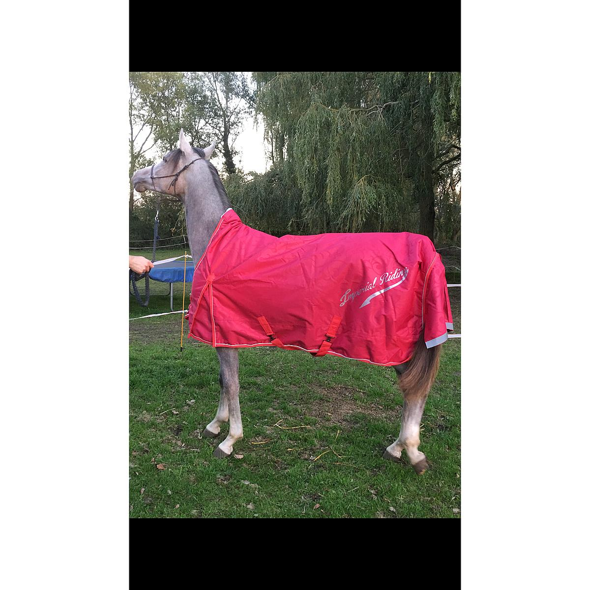 Imperial Riding Outdoor Decke Super-dry 100g Rot