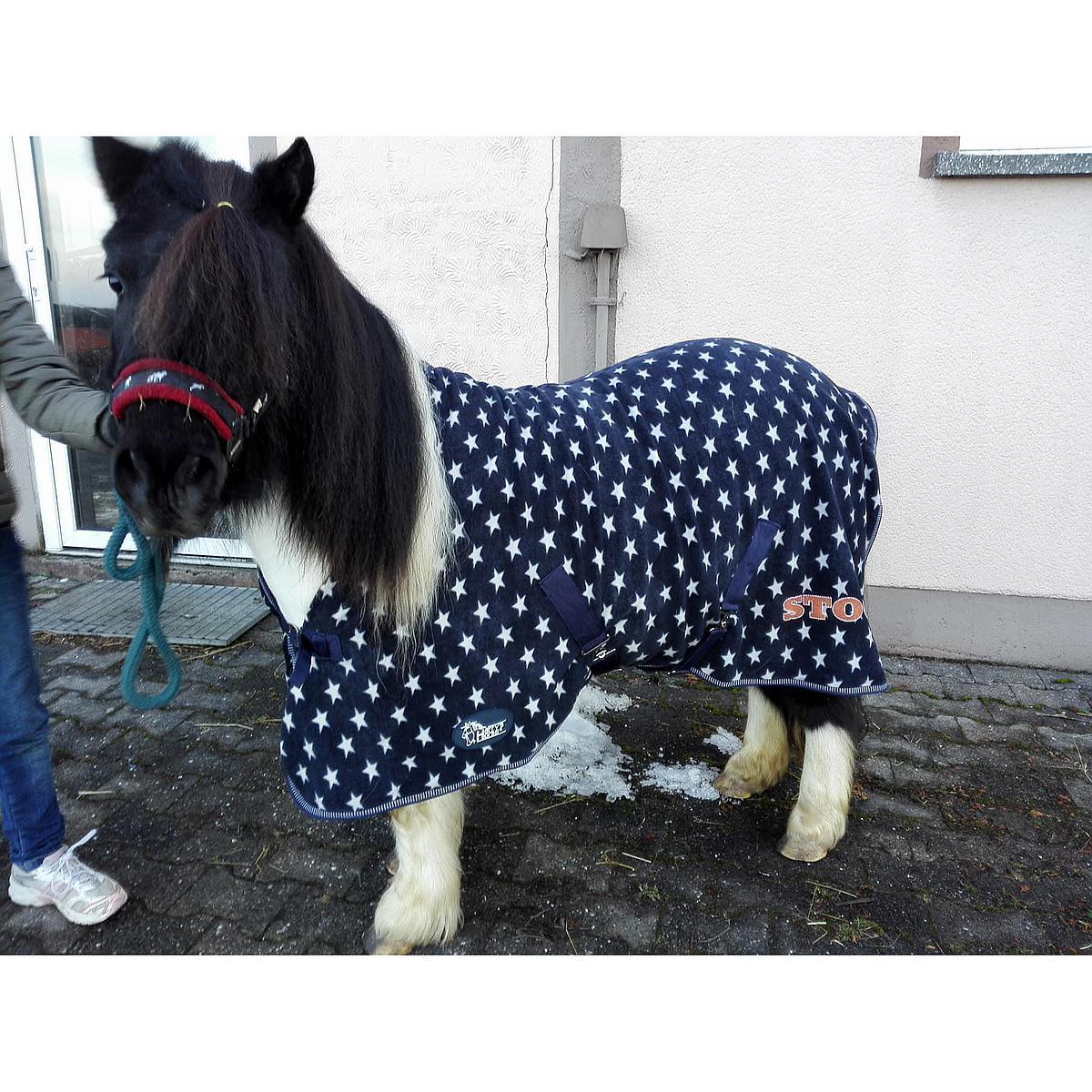 Harrys Horse Fleecedecke STOUT!