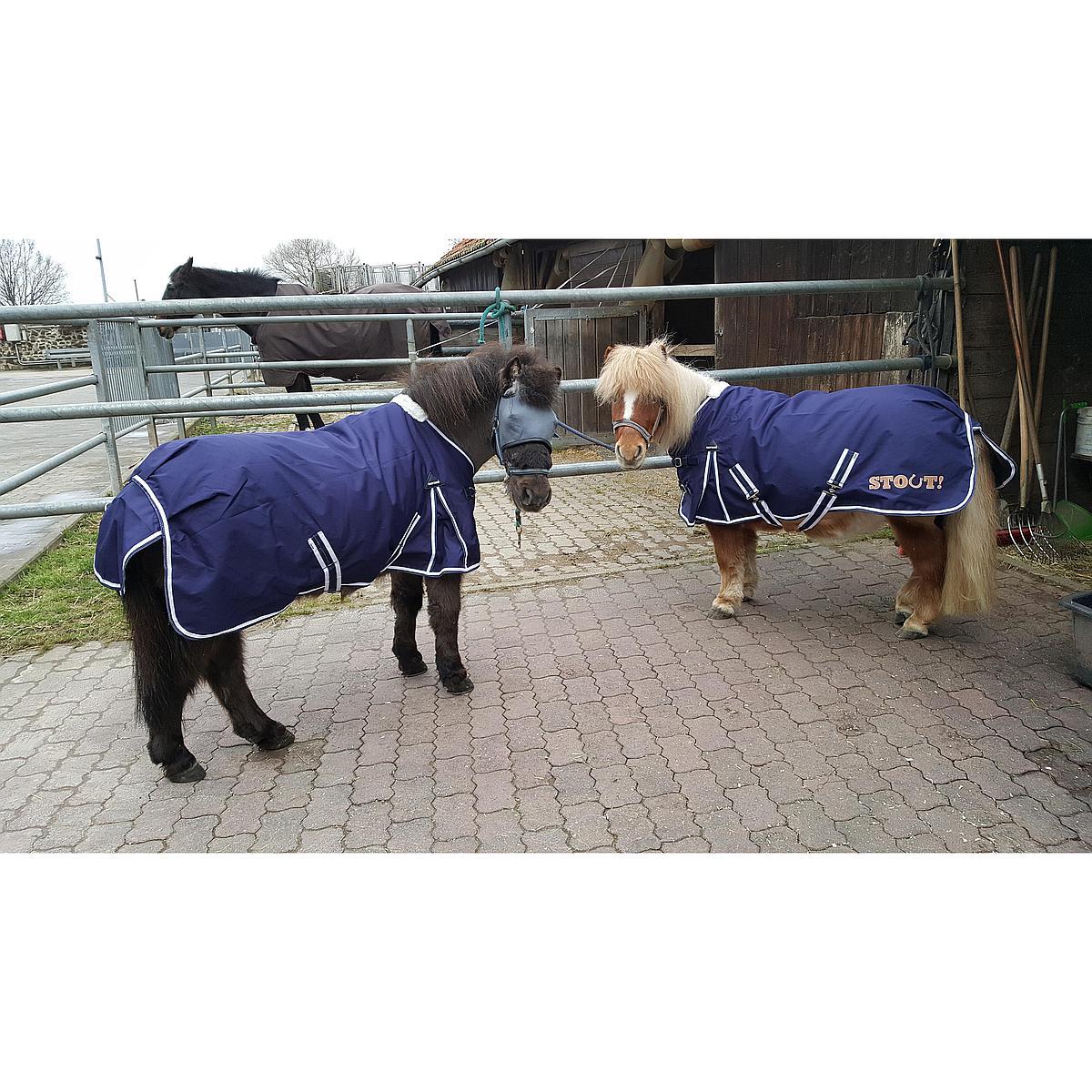 Harrys Horse Regendeken STOUT!