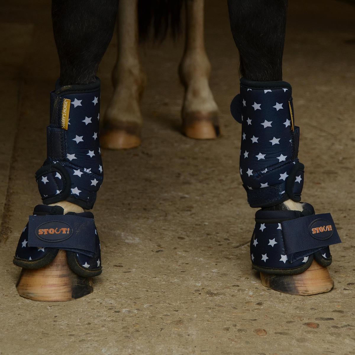 Harrys Horse Beenbeschermers STOUT!