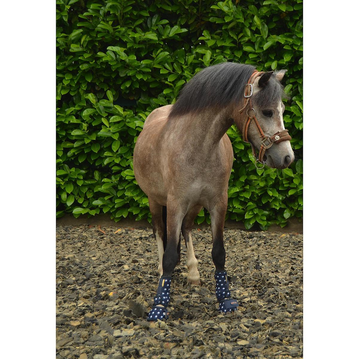 Harrys Horse Springschoenen neopreen STOUT!