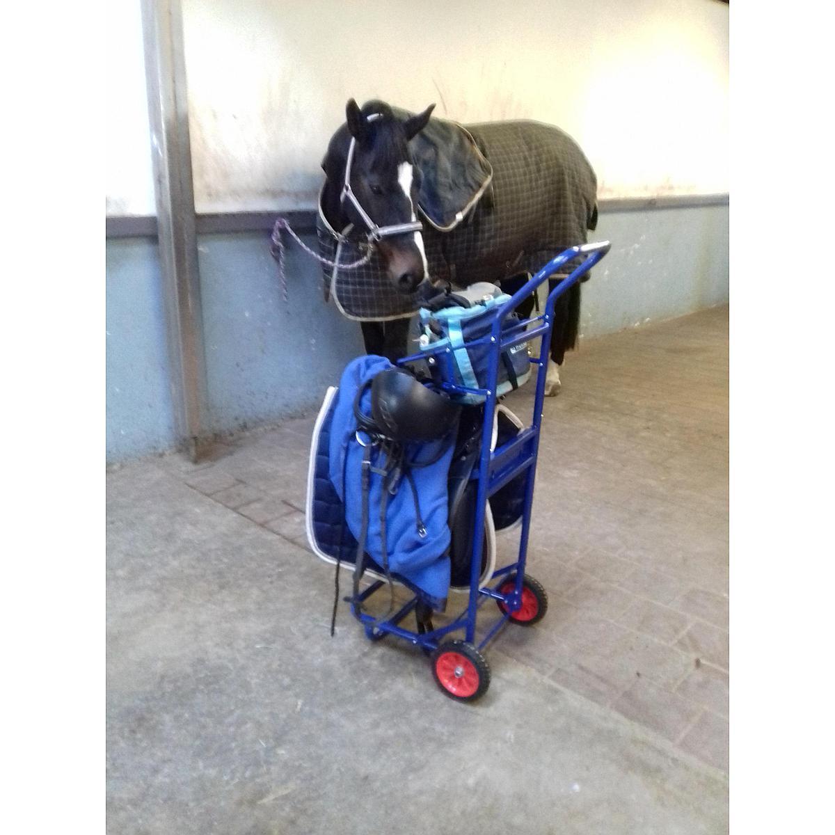 Harrys Horse Stalkruier Colour Blauw