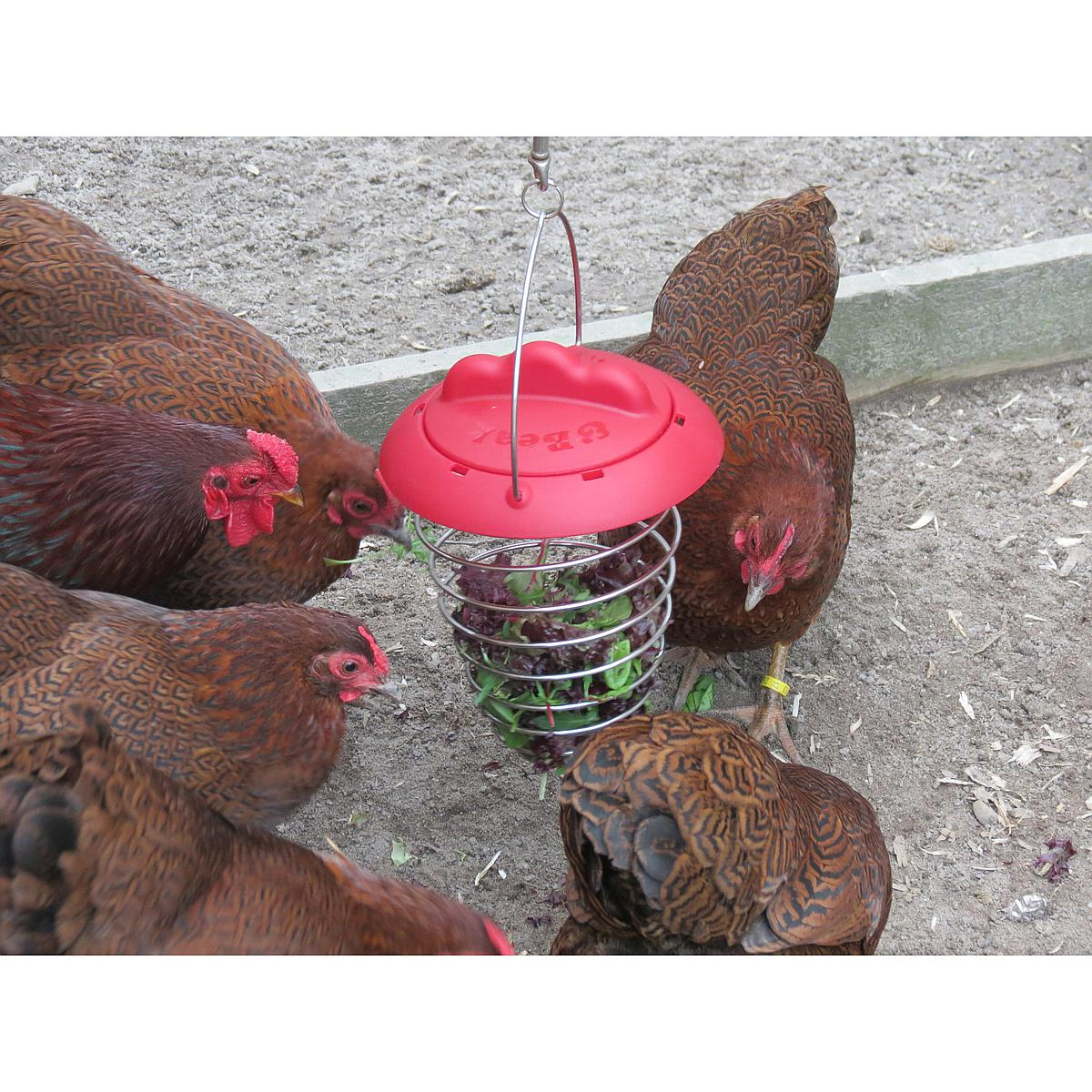 Agradi Poultry Vegetable Holder (Feathers & Beaky)