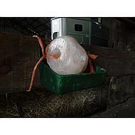 Prohorse Himalaya Horse Lick 2-3kg