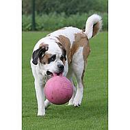Jolly Ball Speelbal Bosbessengeur Lichtblauw 10