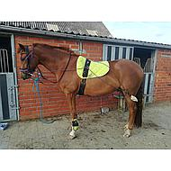 Harrys Horse Longeerhulpteugel Pony