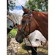 Harrys Horse Bridon sans Mors Noir Full