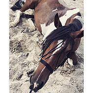 Harrys Horse Vliegenfrontriem Full