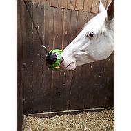 Kerbl Balle de Jeu Thérapeutique Vert 25cm