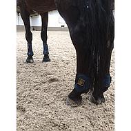 BR Pees- & Kogelbes Set Pro Tech Pu Neopreen Blauw Pony