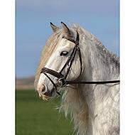 Harrys Horse Bride Luxe avec Muserolle Bridon Noir Poney