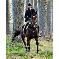 Harrys Horse Elastisch Voortuig Bruin Pony