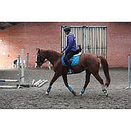 BR Peesbeschermers & Strijklappen Set Mel Carribean Pony