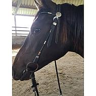 Pfiff Western Bridle Rolled Leather Black Shetty