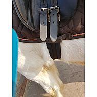 Kerbl Singel Eurohorse Zwart 110cm