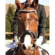 Harrys Horse Frontriem Crystal Wave Zilver Full