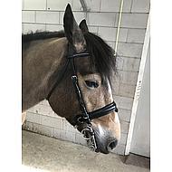 Harrys Horse Mors Pelham Caoutchouc Embout Non Cassé Noir 13.5