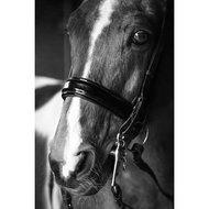 Harrys Horse Dressuurstang Dun Mondstuk 13,5cm