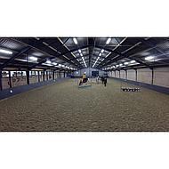 Harrys Horse Zadeldek Dutch Oranje Full DR