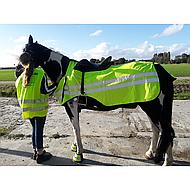 Harrys Horse Exercise Sheet Reflective reflective S