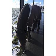 Harrys Horse Teddy Fleecedeken Halve Hals Chestnut 105/155