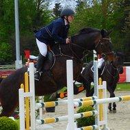 Harrys Horse Rijjas Superstar Navy S