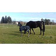 Amigo by Horseware Foal Rug Medium 200g Navy 90/135