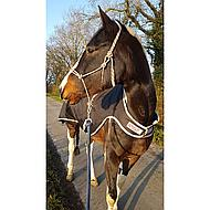 Amigo by Horseware Walker 100g Black Silver S