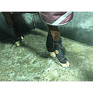 Rambo by Horseware Ionic Stable Boots Black Full