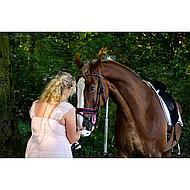 Horka Hoofdstel Kobalt Pony