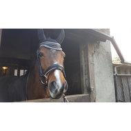 Harrys Horse Oornetje Next Fuchsia Grijs Full