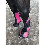 Harrys Horse Peesbeschermers Next Fuchsia Cob