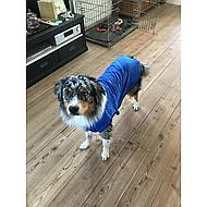 Duvo+ Badjas voor Hond Microfiber Blauw 58cm