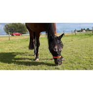 Pfiff Fly Mask Motif Colourd Pony