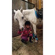 Pfiff Peesbeschermers Lichtbl-Donkerbl Pony