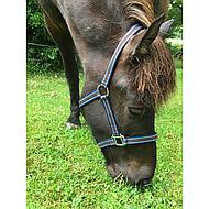Pfiff Kunststof Halster Bruin-Lichtbr-Blauw Pony