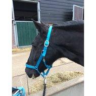 Pfiff Kunststof Halster Lichtblauw, Onderlegd Pony