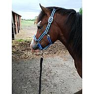 Pfiff Kunststof Halster Zwart-Turqoise-Blauw Pony