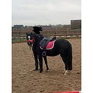 Pfiff Zadel Vz Beauty Incl. Stijgbeugels Zwart 18 inch