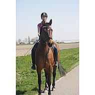Hkm Rijbroek Stars & Stripes Denim Jeansblauw 170