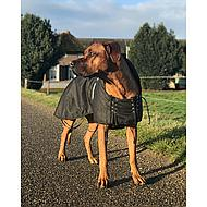 Back on Track Dog Waterproof Rug with Filling Black 91cm