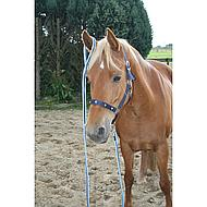 Harrys Horse Lijn Soft 2m Brown/Beige
