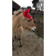 BR Filet Anti-Mouches Glamour Chic Poly Rouge Poney