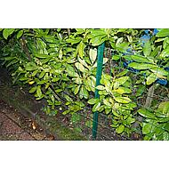 Betafence Afrasteringspaal Groen 150x3.8cm