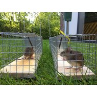 Agradi Drahtkäfig Rattenfalle Alive