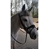 Horka Hoofdstel Crown Zwart/zilver Cob