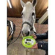 Nutrilick by Horseware Lick Apple  650gr